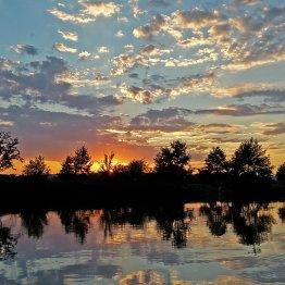 Červenec na rybníku Nohavice